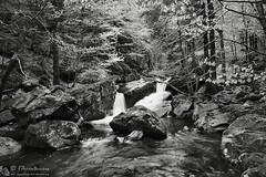 Valle delle Pozze, l'attrattiva di un intrigo ambientale (EmozionInUnClick - l'Avventuriero's photos) Tags: blackwhite bn cascate valledellepozze