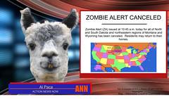 al-paca-49-dakotas-zombie-alert-canceled (tvradiopro1) Tags: news zombie netorwk