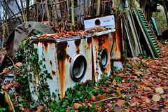 guardo il mondo da un obl... (riccardo nassisi) Tags: auto abandoned car pc rust ruins fiat rusty scrapyard wreck scrap piacenza wrecked ruggine relitto rottame travo epave abbandonata