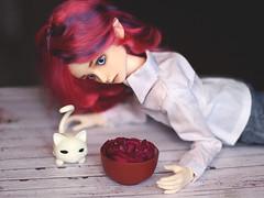 IMG_0953 (Alighieri_Floren) Tags: doll bjd wish abjd dollleaves