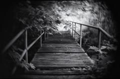 zufllige wrter (partis90) Tags: bw monochrome lens photography fuji cctv sw fujifilm schwarzweiss 25mm xpro1