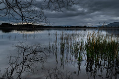 calm before the storm (morag.darby) Tags: sky lake storm reflection water grass clouds digital rural reeds outside nikon outdoor calm shore loch nikkor d3300