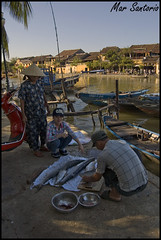 Pescado fresco (Mar Santorio) Tags: fish rio d50 river nikon vietnam hoian pescado saigon thubon