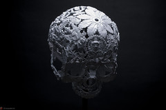 IMG_4960 (m.acqualeni) Tags: sculpture metal dark de dead death skull noir mort gothic goth manuel morbid alain gothique mtal fond tete tte morbide belino acqualeni