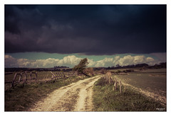 Angry Heavens I (go18lf2004) Tags: trees weather clouds fence sussex track mood path threatening fields crops atmospheric southdowns