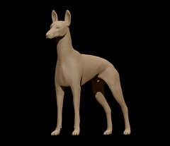 pharaoh hound (Nidum Dolls) Tags: dog doll bjd pharaohhound nidumdolls