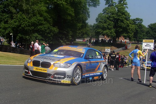 Rob Collard during the BTCC weekend at Oulton Park, June 2016