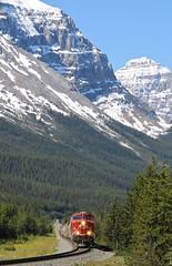 Stephen, British Columbia (UW1983) Tags: britishcolumbia trains stephen canadianpacific cp railroads kickinghorsepass laggansubdivision