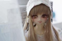 Doll Meet in May (Muri Muri (Aridea)) Tags: ball doll super  sakura bjd vs dollfie volks abjd msd jointed