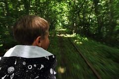 Dressincykling (Bemijoca) Tags: railroad bike bicycle speed forest skne track sweden skog fart cykel dressin spr bjrnstorp