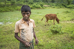 Srimangal-6143 (BohemianTraveler) Tags: asia tea bangladesh srimangal srimongol sreemangal