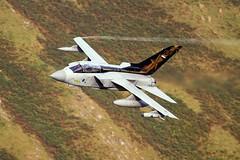 Goldstar (Dafydd RJ Phillips) Tags: mach loop snowdonia wales low level goldstar special tail royal air force raf marham panavia tornado gr4