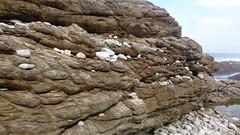 Rocky Coastline (Rckr88) Tags: ocean africa travel sea cliff nature water rock southafrica outdoors coast rocks south cliffs coastal coastline gardenroute tsitsikamma easterncape rockycoastline tsitsikammanationalpark