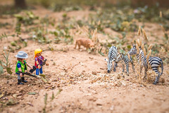 8/52 Ras de suelo/at ground level (Xisco Bibiloni) Tags: project toy playmobil juguete rasdesuelo atgroundlevel project52 project52week