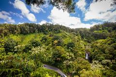 IMG_0079.jpg (Michele Stocco) Tags: hawaii gardenofeden 2016 mauiroadtohana