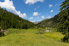 IMG_0695-240 (Martin1104) Tags: fotografie natuur bergen landschap vlinders yagodina snp bulgarije natuurfotografie natuurreis