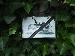 Invalidenrad Victoria (mkorsakov) Tags: city bike bicycle sign wall drawing wand ivy victoria schild fahrrad mnster innenstadt zeichnung efeu parkverbot fahrradparkverbot invalidenrad