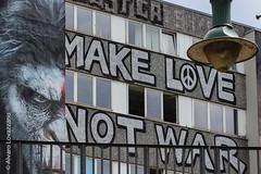 Berlín - Berlin (Alvaro Lovazzano) Tags: alemania canon viaje2014 t3i viaje love war germany tedesco monkey mono graffitti angry enojo makelove muro ventanas windows finestre deutschland rayado 600d viaggio