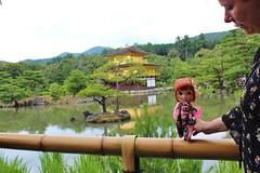 Geisha girl (swanze2019) Tags: japan kyoto kinkakuji goldentemple