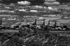 Mondialisation (vedebe) Tags: city bw mer monochrome architecture port noiretblanc bateaux nb rue ports paysages ville urbain grues netb portsaintlouisdurhne
