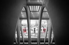 Station (Vincent Dehon) Tags: tgv liege station guillemins gare railroad street art black white pose lente still slow motion architecture