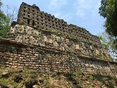 IMG_1990 (tomboy501) Tags: mexico maya guatemala mayanruins chiapas yaxchilan usumacintariver