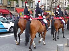2016.06.03.101 PARIS - La Garde Rpublcaine, gardes (alainmichot93 (Bonjour  tous)) Tags: 2016 france ledefrance seine paris garderpublicaine cavalerie cavalier uniforme cheval streetlife