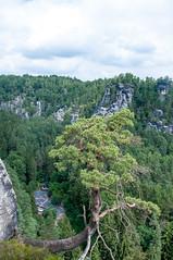 Die Rathener Felsenbhne von oben (Zeitsklave) Tags: nikon d90 zeitsklave schsische schweiz elbsandstein rathen felsenbhne