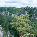 Die Rathener Felsenbühne von oben thumbnail