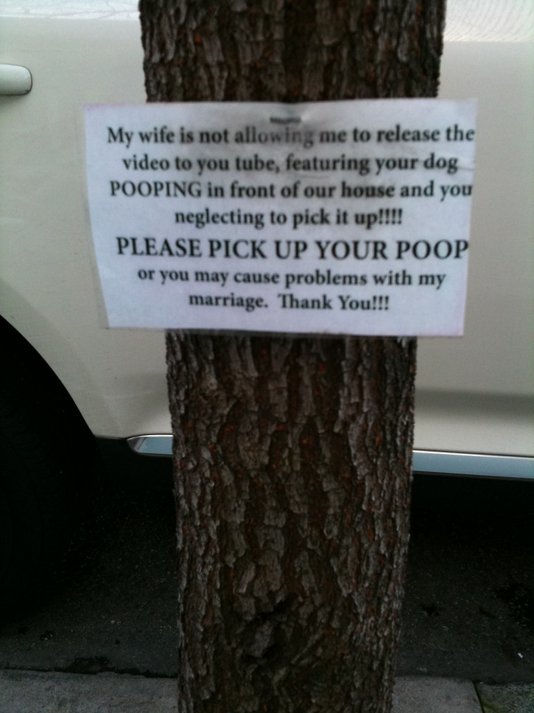 My wife is not allowing me to release the video to you tube featuring your dog POOPING in front of our house and you neglecting to pick it up!!!! PLEASE PICK UP YOUR POOP or you may cause problems with my marriage. Thank You!!!