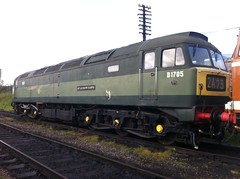 D1705 (Boothby97) Tags: br sparrowhawk type1 gcr class47 47117 d5830 loughbourgh type1locomotivecompany t1lc