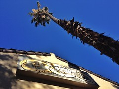 The Odd Fellow (misterbigidea) Tags: street city blue shadow sky urban building tree rooftop sign landscape neon view palm lodge curious fraternal flt stockton ioof oddmanout onlooker independentorderofoddfellows threelinkfraternity oddfellowship friendshiplovetruth