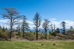 Isle Of Eigg - Image 29