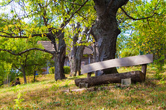 IMG_9438 (Ivan Knecht) Tags: vikendica okic