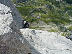 Alpinismo Gran Sasso - Via del Vecchiaccio