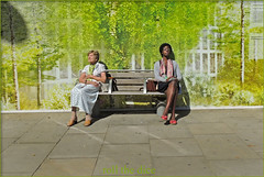 `939 (roll the dice) Tags: life uk trees portrait people urban signs black hot green london art classic weather fashion dark bench poster relax design women couple pretty colours shadows natural sleep candid strangers streetphotography fake sunny enjoy unknown rest scarves reaction unaware w8 pensioner londonist kensingtonchelsea
