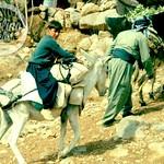 Halabja, Kurdistan