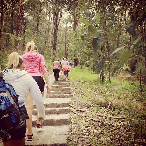 #1000steps #kokodamemorialwalk #runningitnexttime #sundayout #mtdandenong #ferntreegully #melbourne #exploring @visitmelbourne
