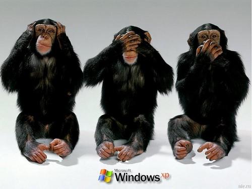 windows-xpregle