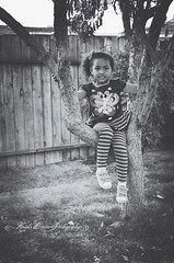 (Krista Cordova Photography) Tags: tree fall girl kids children sister cutekids hispanicchildren africanamericanchildren