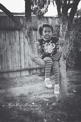 (Krista Cordova Photography) Tags: tree fall girl kids children sister cutekids hispanicchildren africanamericanchildren