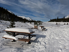 The beauty of winter (annkelliott) Tags: autumn trees snow canada mountains fall nature forest landscape kananaskis scenery seasons meadow trail alberta picnictable snowcovered kcountry highway40 likewinter swofcalgary ptarmigancirqueparkingarea