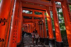 Fushimi Inari-taisha (BlufoxImages (Larry)) Tags: japan nikon kyoto peaceful f28 fushimiinaritaisha 1424 toriigates d700