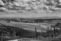 Campagna Chiantigiana (Alberto Pagliaro) Tags: bw white black landscape country hill