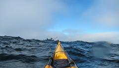 peek-a-boo (Lisa Ouellette) Tags: birthday events kayaking bask sonomacoast mikehiggins campbellcove paatit cheateddeathagain2014