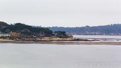 Seascape (Chaotic Zen Photography) Tags: trees houses seascape seaweed beach beautiful shoreline overcast shore carmel peninsula rockyshores cloudyday chaoticzenphotography