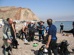 IMG_0409 (acmt2001) Tags: sea fish coral underwater  redsea scuba diving reef eilat