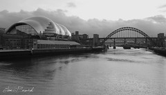 The Tyne (Tom Bewick) Tags: camera bridge bw white black water night canon river newcastle lens shot united sydney picture kingdom sage tyne millennium gateshead kit sig upon ncl 550d manfroto egnt