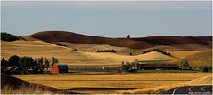 Palouse Country - Eastern Washington State (West County Camera) Tags: simplysuperb mygearandme mygearandmepremium mygearandmebronze mygearandmesilver mygearandmegold mygearandmeplatinum mygearandmediamond ringexcellence flickrbronzetrophygroup tplringexcellence eltringexcellence