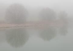 (pgaros) Tags: espaa naturaleza reflection nature water fog landscape mirror three spain agua scenery pablo paisaje espejo reflejo tres niebla navarra berriozar berrioplano nuevoartica pgaros pablogarcaoss bergazki wwwpgarciaosescom